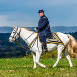 Sheridan & His Horse