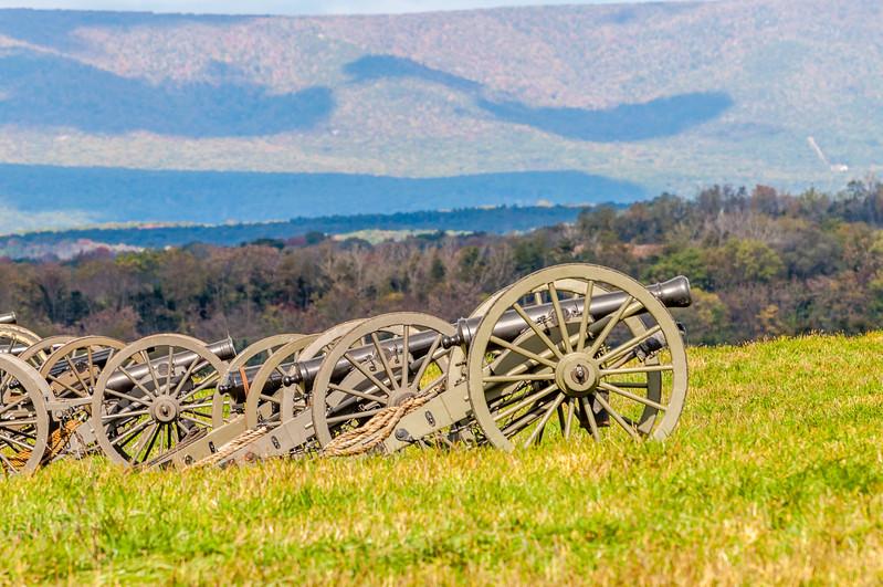 Confederate Artillery Lined Up