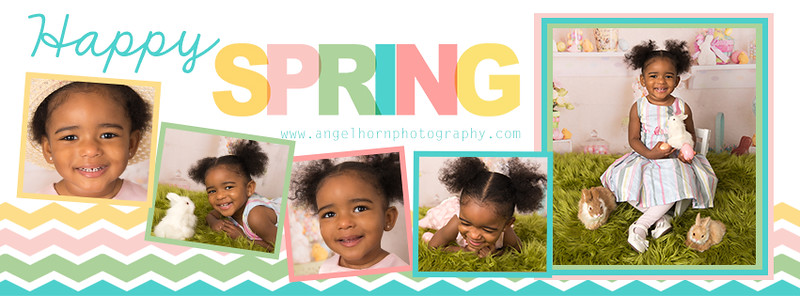 springtimelinecover