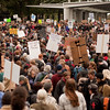 The large crowds at the Occupy Portland movement in Portland Oregon.