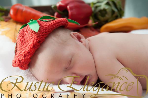 Sadie_Christmas-159