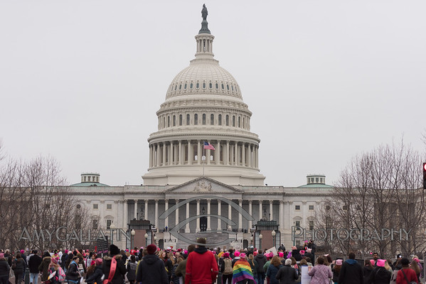 2017-01-21 Women's March on Washington AMY_2014