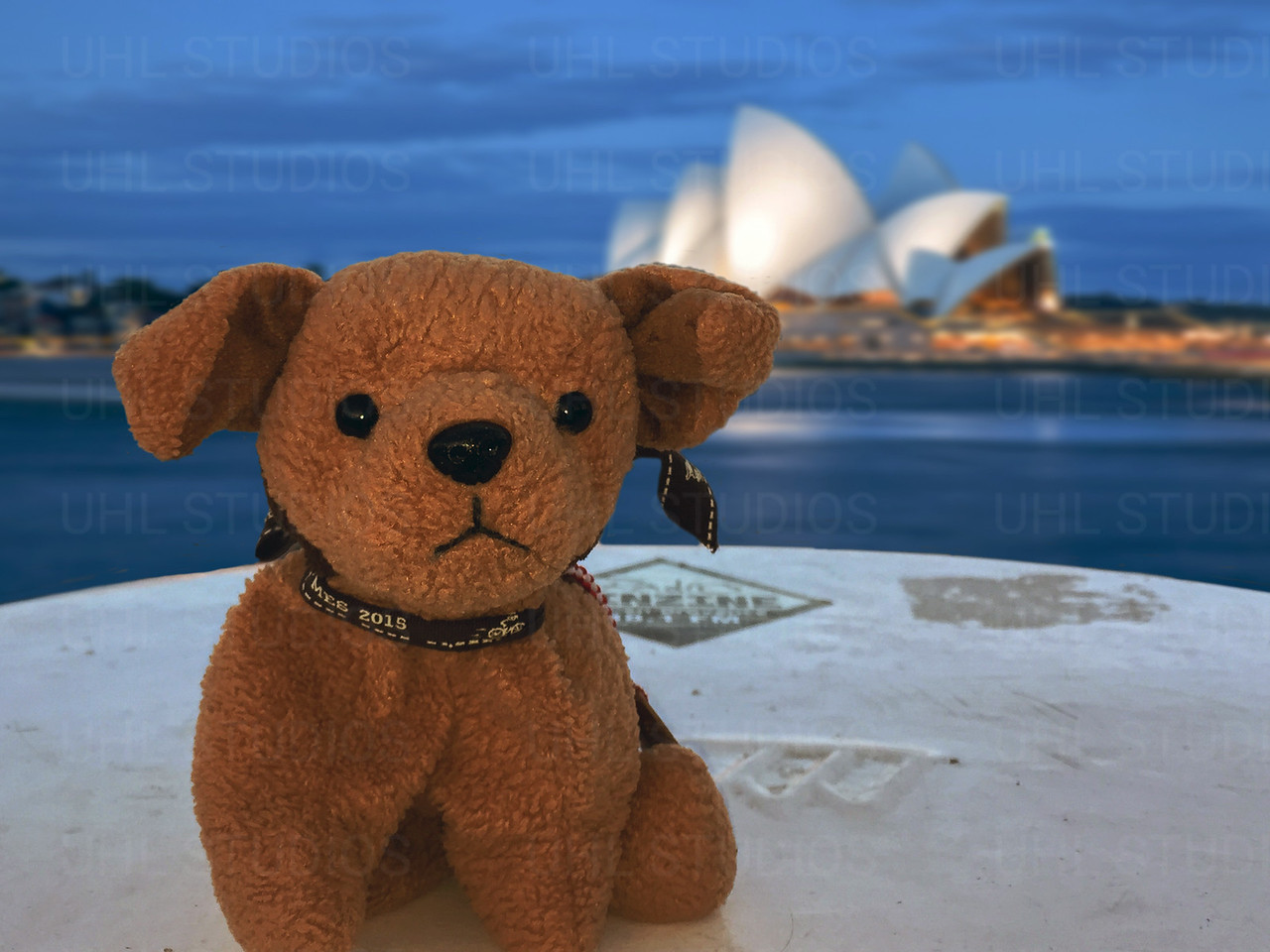Kai  visiting the Sydney Opera House