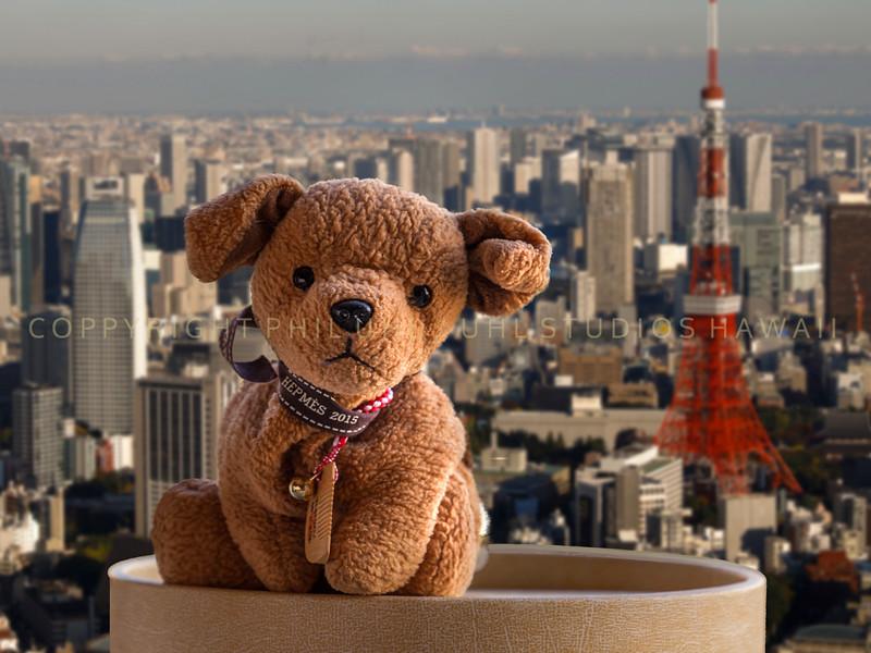 Kai in Tokyo