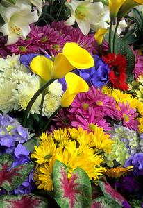 Lilies, Calla Lilies, Hydrangea, Mums & Caladium