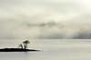 Lake Berryessa Fog