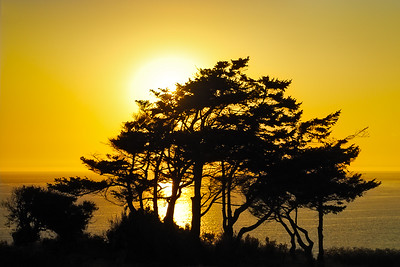 Sunset Silhouette on the Beach