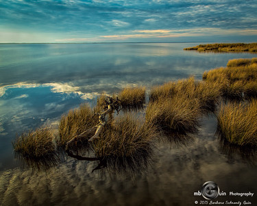 Grassy Bay