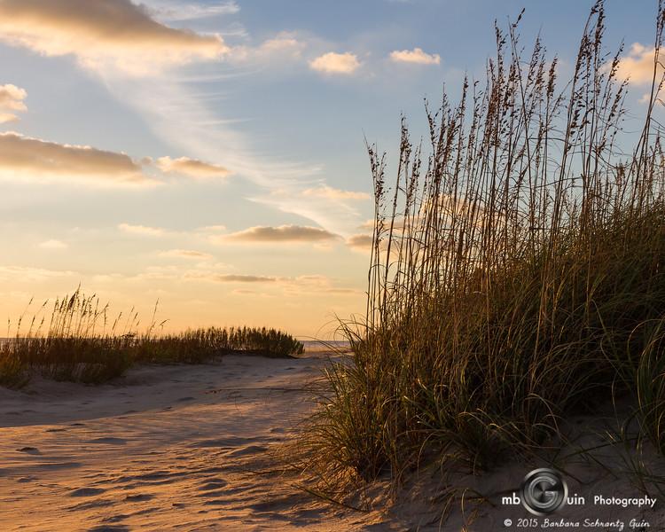Morning Beach Path