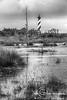 Hatteras Marsh