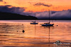 Sunrise, Sailboats & Sausalito