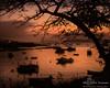 Stonington Sunrise