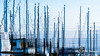 Masts Abstract