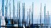 Masts Abstract