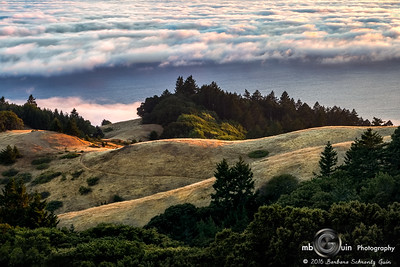 Last Light at Mt. Tam