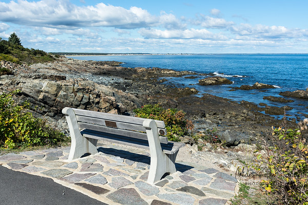 Alone on the Marginal Way, Ogunquit Maine