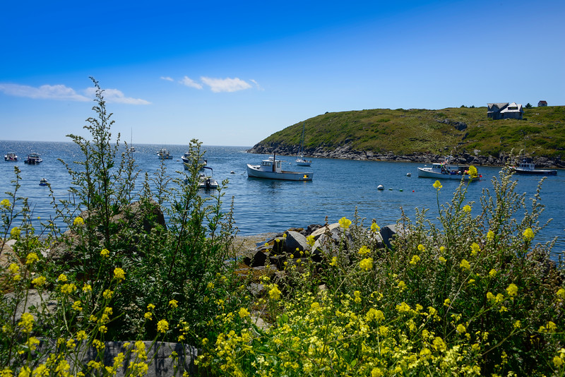 Monhegan Island Lobster Boats