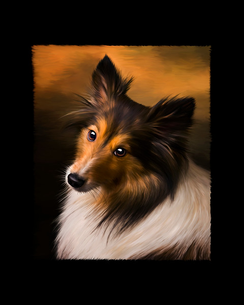 Digital Painting of Sheltie