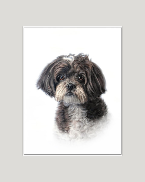 Portrait of Dog Digially Painted