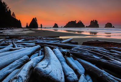 Shi Shi Beach Olympic National Park, Washington