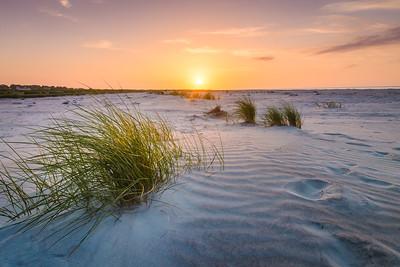 Dunes Awaken