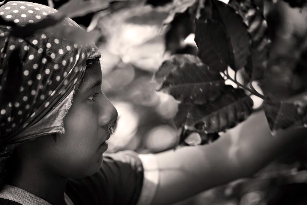 Nicaragua_07Nov16_0086