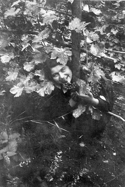 Zalishchyky. Renia in the vineyard