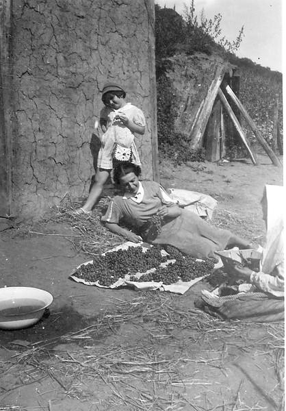 Grape farm in the region of Zaliszczyky, 1937. Ariana ( Elizabeth),  and  Roza  Spiegel