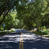 This is Arizona State Route 87A through Oak Creek Canyon just north of the town of Sedona.<br /> I would recommend this peaceful drive through the Red Rocks of Sedona north which comes out close to the town of Flagstaff on Interstate I-17.