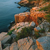 Sunrise on coast, Acadia NP, Maine, yyyy