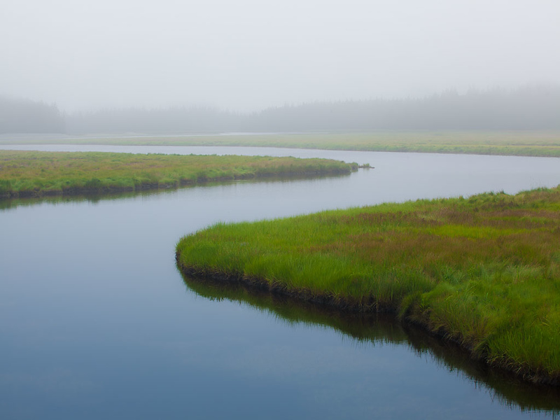 Bass Harbor Marsh, Acadia NP, ME