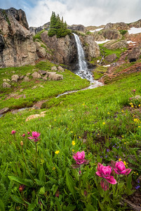 Waterfall and Wildflowers