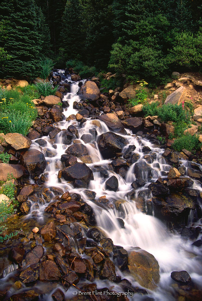 S.1715 - forest waterfall, Arapaho National Forest, CO.