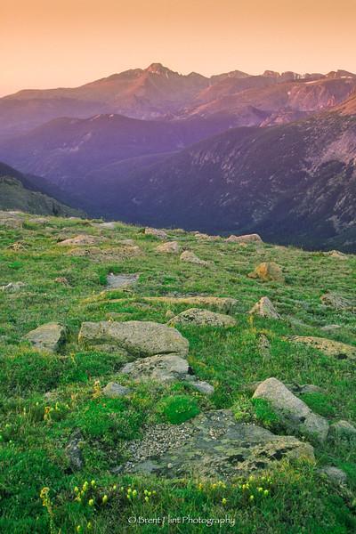 S.1754 - Alpenglow on Long's Peak, Trail Ridge Rd., Rocky Mountain National Park, CO.