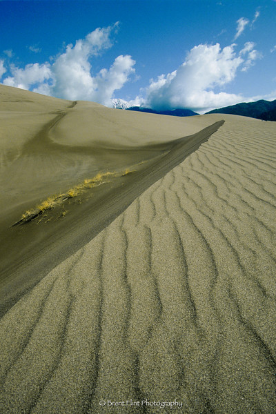 S.1454 - sand dunes and Mt. Herard, Great Sand Dunes National Park, CO.