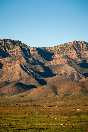 South Wilpena Pound Ranges