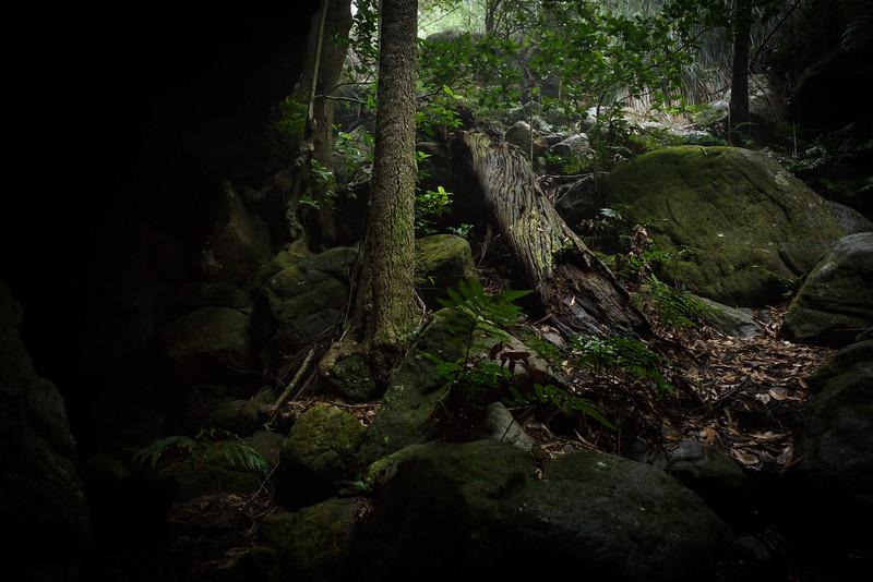 Nibelung Pass : Monolith Valley : Budawangs