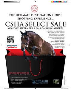 Poster for the 2013 CSHA Select Sale