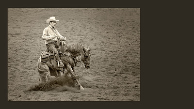 Working Cow Horse Competition - Calgary Stampede 2014