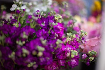 SP_Floral-44