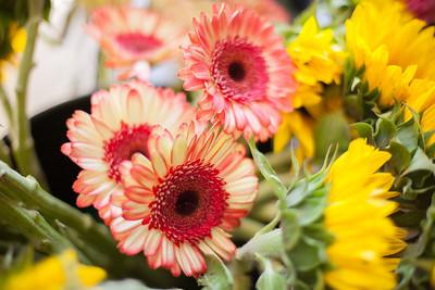 SP_Floral-22