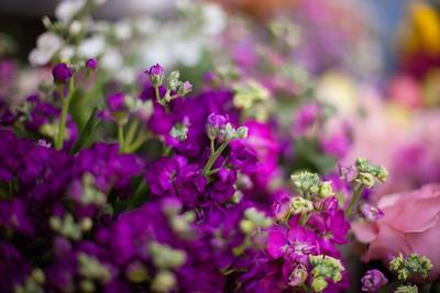 SP_Floral-43