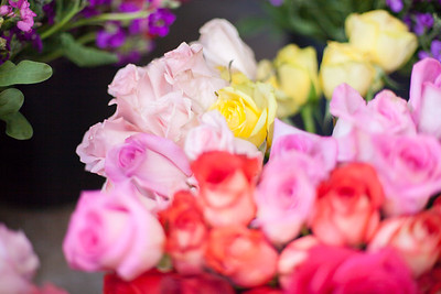 SP_Floral-25