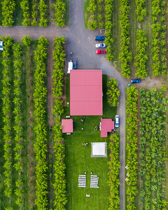 Wedding Venue in an Orchard Near Hood Mountain, Oregon