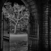 Gateway to All Hallows Eve