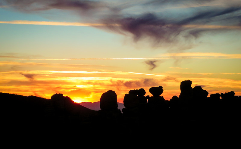 Sunset Sentries