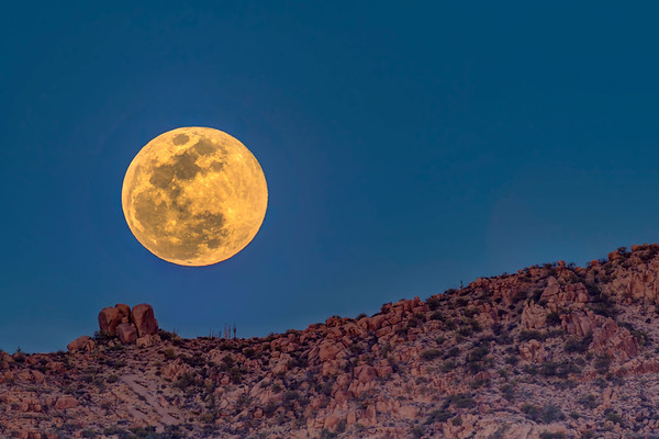Full Moon in Scottsdale