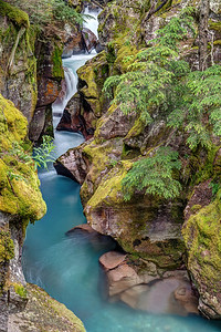 Avalanche Creek Falls