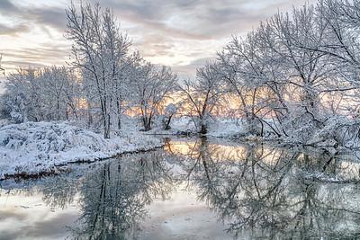 Winter Reflection
