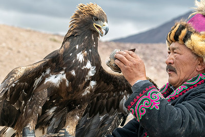 The Eagle Master 3